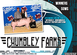 New Site: Chumbley Farms