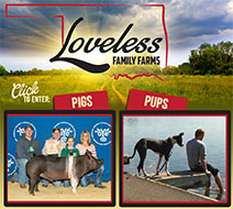 New Site: Loveless Family Farms