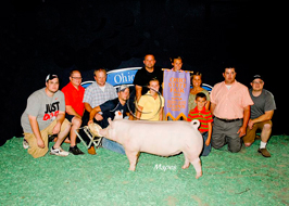 Ohio State Fair Showpig Results