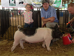 The Big One Showpig Jackpot Results