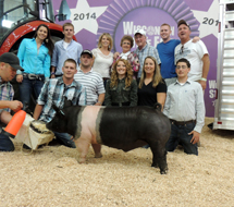 Wisconsin State Fair Showpig Results